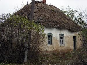 Премьер-министр Украины пообещал дать новую жизнь селам